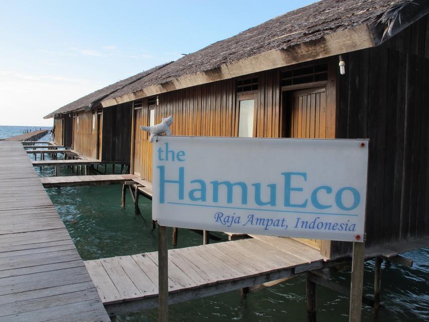Paket Tour di Hamueco Raja Ampat