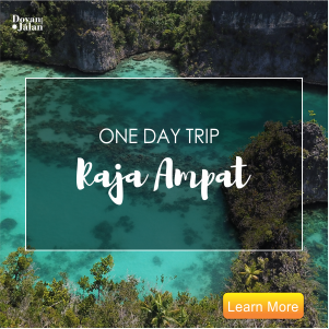 one day trip Raja Ampat