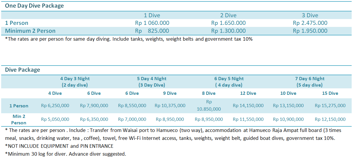One day Dive Package Raja Ampat
