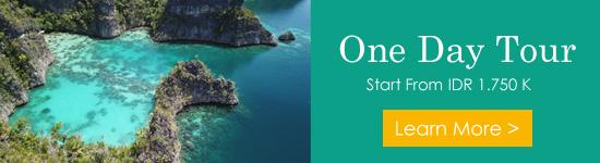 Open Trip Raja Ampat One Day Tour